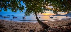 树影夕阳 (Ah Wei (Lung Wei)) Tags: air beach clouds defish fisheye georgetown georgetownpenang landscape light malaysia nature paysage penang penangisland pulaupinang samyang samyang12mmf28edasncsfisheye samyang12mmf28 seascape seashore shore sun sunlight boats permatangdamarlaut sunset sunsets tree green