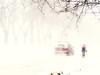 rien n'arrête les Montréalais (photosgabrielle) Tags: photosgabrielle streetphotography hiver neige snow bike winter montreal urban