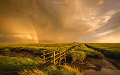 After the Rain (Matt Rimkus Photography) Tags: grass northsea eiderstedt sunset colourful schleswigholstein water marshland sky seascape bridge coast drama clouds tating deutschland de