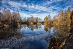 Today at the pond (++sepp++) Tags: fohlenausee landscape landschaft landschaftsfotografie bayern bavaria deutschland germany see teich pond lake spiegelung reflection mirroring sonnig sunny januar january winter abigfave