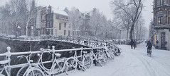 Snow in Amsterdam does not keep the Dutch from riding their bicycles (B℮n) Tags: bike snow covered bikes bicycle holland netherlands canals winter cold wester church street anne dutch people scooter gezellig cafés snowy snowfall atmosphere colorful walk walking cozy light corner water canal weather cool sunset file celcius mokum pakhuis grachtengordel unesco world heritage sled sleding slee seagull nowandthen meeuw seagulls meeuwen bycicle 1°c sun shadows sneeuw brug slippery glad flakes handheld wind code rood sintjansbrug amsterdam umbrella colors herengracht leliegracht 50faves topf50 100faves topf100