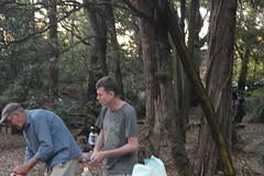 IMG_0138 (bobmendo) Tags: lcmanglicanchurch lane cove helen st reserve helenstreserve christmas park ark christmasinthepark lcm