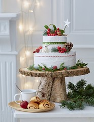 Winter Woodland Cake Stand (Heath & the B.L.T. boys) Tags: christmas wood cake dessert berries evergreen rustic star bunny rabbit squirrel mushroom pinecone ribbon
