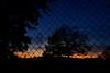 oltre (luporosso) Tags: natura nature naturaleza naturalmente nikon cielo sky tramonto sunset paesaggio landscapes landscape rete web alberi trees silhouette siluetas