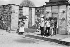 Cementerio Central, Bogotá (RoryO'Bryen) Tags: centro copyrightroryobryen colombia colombie bogotá roryobryen rangefinder leicamp summicron 50mm panf panf50 scannedfromnegative cementeriocentraldebogotá