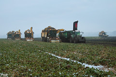 Sugar Beet Harvest | ROPA // FENDT // HAWE (martin_king.photo) Tags: sugarbeetharvest sugarbeet harvest sugarbeetfieldtransfertrailer ropaeurotigerv83 ropaeurotigerv84 sugar beet field transfer trailer ropaeurotiger white snow whitefield sugarbeetharvester sugarbeetharvestxxl ropa ropatiger cold coldday workeveryday tschechischerepublik powerfull martinkingphoto machines strong agricultural greatday great czechrepublic welovefarming agriculturalmachinery farm workday working modernagriculture landwirtschaft machine machinery winter winterwork sugarbeetcampaign2017 campaign sugarbeetcampaign fend933varios4 haweruw4000 fendt