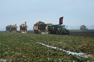 Sugar Beet Harvest | ROPA // FENDT // HAWE