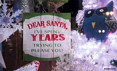 Dear Santa... (Clayton Perry Photoworks) Tags: vancouver bc canada richmond steveston explorebc explorecanada fall autumn pieces night lights sign