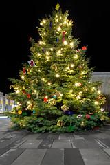 Christmas tree (Occulytus) Tags: weihnachtsbaum christmastree nacht night ostwestfalen eastwestphalia verl germany