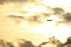 (Teruhide Tomori) Tags: japanairlines boeing777 airplane aircraft osakainternationalairport landing itamiairport japan 大阪国際空港 伊丹空港 日本航空 jal sky sunset clouds jet plane