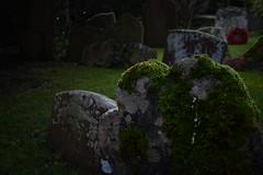 graveyard2 (phytochromeB) Tags: graves gravestone poppy wreath backlit moody sinister green