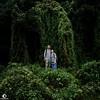 Magical Place。 (ORANGEREPUBLIC) Tags: sonya6000 sonysel1650 mirrorless photoshopexpress secretgarden forests