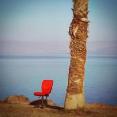 Chair with a view (claudia.joseph16) Tags: sea beach shore chair tree boss