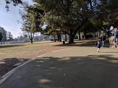 IMG_20180101_111626 (earthdog) Tags: 2017 needstags needstitle googlepixel pixel cameraphone moblog androidapp
