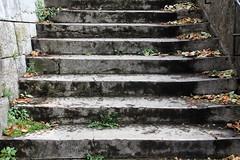 Escalier (just.Luc) Tags: lyon steps stairs trappen escalier treppen stone steen stein pierre france frankrijk frankreich francia frança europa europe rhônealpes