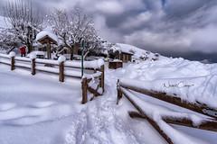 Noche en Lagos de Covadonga (Norbert Cabeza Llanes) Tags: asturias paraisonatural lagos de covadonga vuelvealparaíso paisaje natural montaña turismo viajar aire libre vivir agua nieve cielo rural arbol landscape nevada ercina enol caminar frio