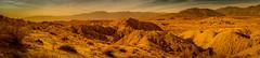 DSCF0835 (rjosef) Tags: borrego desert
