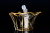 Golden Crown (jeff's pixels) Tags: highspeed paint crown macro gallery gold silver subwoofer audio
