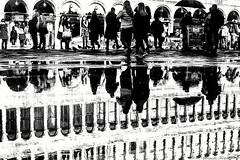 Upside down  ... (alessandrafinocchiaro67) Tags: monocromatico monochrome blackandwhitephotography blackandwhiteonly blackandwhitephoto blackandwhiteart blackandwhiteph blackandwhite blackandwhiteperfection blackandwhitepic monoc bestmonochrome bestblackandwhite bestmonoch fujifilmx100f fujifilmphoto fujifilmphotography fujifilmstr fujifilm streetsty streetstyle streetwater streetart streetcapture