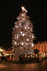 Christmas Tree in the Old Town Square Prague on 3 December 2017 (The McCorristons) Tags: 2017 christmas czech december market old prague praha republic square town