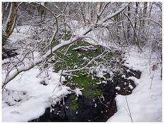 Vinterbekk (Krogen) Tags: winter vinter norge norway norwegen akershus romerike ullensaker nordbytjernet krogen motorolag5plus smartphone