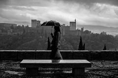 Cotidianidad a pesar de todo (Antonio_Luis) Tags: primer premio concurso fotografico alhambra albayzin albaicin mirador san nicolas banco lluvia paraguas vista skyline blancoynegro street nubes nublado contraluz alcazaba granada andalucia