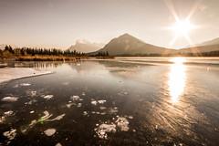 (cec403) Tags: winter methanebubbles icebubbles bubbles frozen ice vermillionlakes mountrundle banff banffnationalpark mountains rockies sun alberta canada canont4i