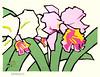 Cattleya orchid (Japanese Flower and Bird Art) Tags: flower cattleya orchid orchidaceae saburo miyata modern woodblock print japan japanese art readercollection