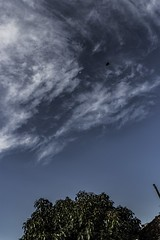 _MG_8213 (Jerseket) Tags: moon moonshot moonshots luna lunar clouds cloud cloudy nubes nube nublado nubosidad nuboso tarde canont3i canon sky skyblue cielo cielos ciudad city urban urbano argentina buenosaires photoshop