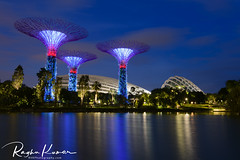 Gardens by the Bay, Singapore (rvk82) Tags: 2017 december december2017 garden gardens gardensbythebay greenery nikkor1424mm nikon nikond850 rvk rvkphotography raghukumar raghukumarphotography singapore wideangle wideangleimages rvkonlinecom rvkphotographycom sg flowerdome cloudforest