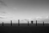 l l l l X l l   l   2017 (weddelbrooklyn) Tags: nordsee sanktpeterording einfarbig schwarzweiss strand wasser wind wetter horizont schleswigholstein wolken dunkel silouette silhouetten nikon d5200 northsea monochrome monochrom blackandwhite beach water weather horizon clouds dark silhouettes