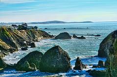 Gleason beach California-1 (garofano_richard) Tags: moss rocks houses hills waves trees steps seawalls rubble california pacificocean gleasonbeach