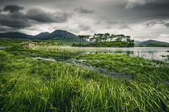 Connemara (steinmetznicolas) Tags: 2017 connemara irlande juin landscape nikon paysage