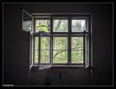 A New Day Has Come! (LiesBaas) Tags: verlasseneorte oldbuildings lostplaces bomen trees window view uitzicht urbex beelitz olympus abreathoffreshairbyliesbaas anewdayhascomebyliesbaas
