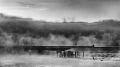 Sea Smoke Rises (jessicalowell20) Tags: route1 black blackandwhite bridge car coast coastal december landscape maine mist newengland northamerica pilings river seasmoke signclouds sky sunrise white winter wiscasset