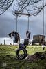 20180103-2018, Elgol, Isle of Skye, Schottland, Tag7-001.jpg (serpentes80) Tags: schottland isleofskye tag7 elgol 2018 scotland vereinigteskönigreich gb