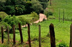 em meu caminho... cheiro de terra molhada! (Ruby Ferreira ®) Tags: fence path campo fazenda farm árvores trees green cêrca landscape paisagem