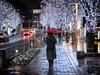 Post New Year's Holiday Rain- Keyakizaka (Rekishi no Tabi) Tags: rain tokyo redumbrella minatoku roppongihills keyakizaka illumination fujifilm xpro2 xf23mmf2 winter