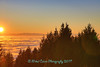 above the fog (Eyesplash - Summer was a blast, for 6 million view) Tags: fog weathercloudstreesautumn sky peasoupmountain cypress lookout elevation sun sunset vancouver bc
