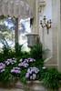 Waddesdon Manor (carolyngifford) Tags: waddesdonmanor waddesdon buckinghamshire nationaltrust conservatory urn blind plants