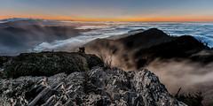 Cliff  Top (Jeff Rowton) Tags: trees tennessee gsmnp greatsmokymountains nature nationalpark dusk supermoon moonlight clifftop alumcavebluff trail tranquil serene hiking highcountry