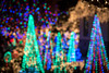 Abstract colorful Christmas tree lights (dmitrycaraman) Tags: 2018 activity cute bay day beauty xmas background santa red lights trees dmitry 2017 families year sunlight family yellow night fun outdoor christmas design backyard closeup happiness party usa gold vacation decorated kids light garden california blue black house beautiful decorative decor photography decoration gift green illustration holiday happy caraman