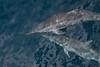 Our boat escort (Sven Rudolf Jan) Tags: alotau papuanewguinea milnebay dolphins