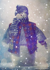 The Snowman (scottnj) Tags: 4365 365project 365the2018edition 3652018 day4365 04jan18 scottnj scottodonnellphotography snow winter cold blizzard snowman snowflakes icy winterscene bokeh vest scarf buttons sweater