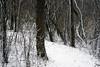 Winter path (ella~d) Tags: winter white season whiteseason snow december park trees watertown southdakota walking cold naturephoto landscape view scenery