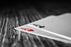 The chances are good (Toukensmash) Tags: playing card cards ace aces red blackandwhite black grey white close up closeup macro big lightsource studio shot wood wooden table home indoors poker gambling gambler game sony alpha58