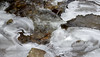 Stone, water, light and ice (vbd) Tags: pentax k3 vbd smcpentaxda55300mmf458ed ct connecticut river newengland water ice kentfallsstatepark stone handheld rocks abstract stonewaterlight park brook creek stream waterfall 2016 winter2016