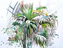 Grande serre du Jardin des Plantes (AnneWEBR) Tags: jardindesplantes