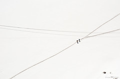 DSC_000(52) (Praveen Ramavath) Tags: chamonix montblanc france switzerland italy aiguilledumidi pointehelbronner glacier leshouches servoz vallorcine auvergnerhônealpes alpes alps winterolympics