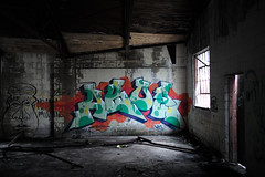 Aroz (piecesofdetroit) Tags: detroitgraffiti detroit graffiti street art streetart graffitiart graffitiwriters motorcity piecesofdetroit germanfriday friday leicat killthematador thegermanfriday aroz mongl ves